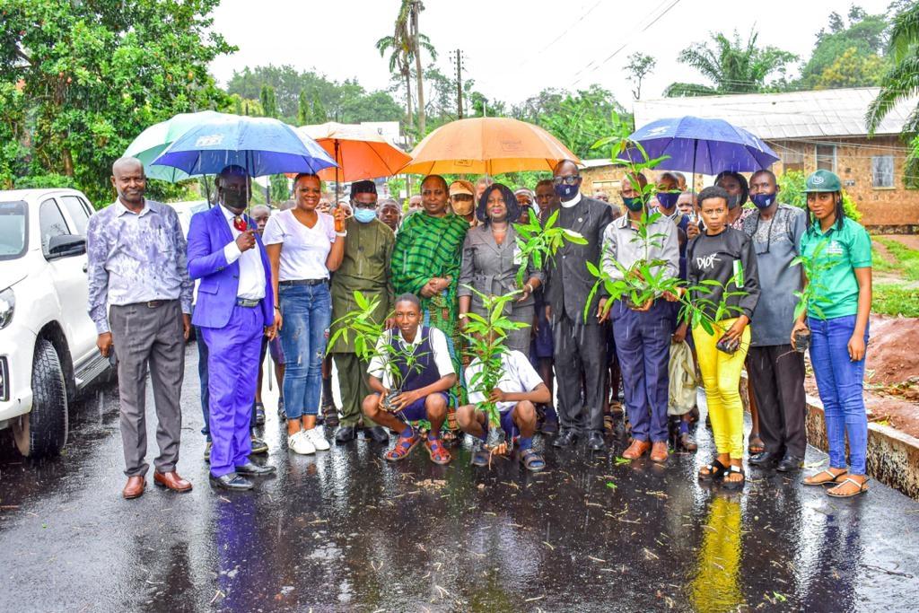 Stakeholders says Ekiti needs N1 billion to plant trees annually