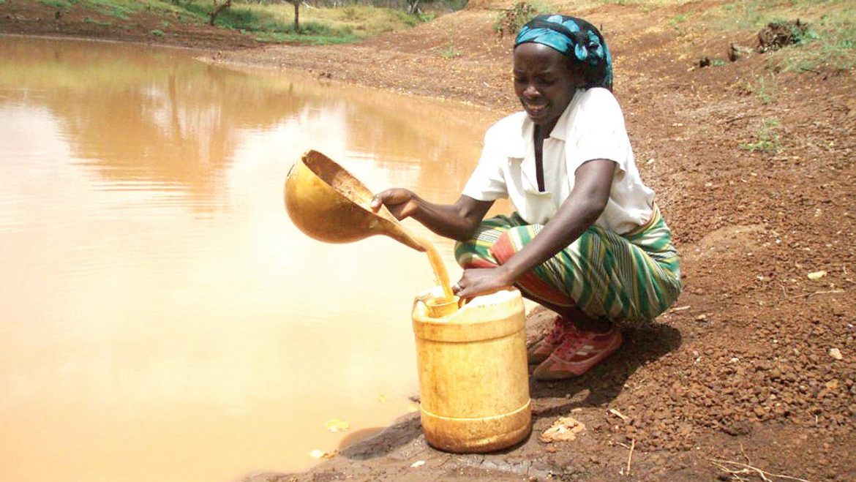 Group fights waterborne diseases in Kebbi, Sokoto